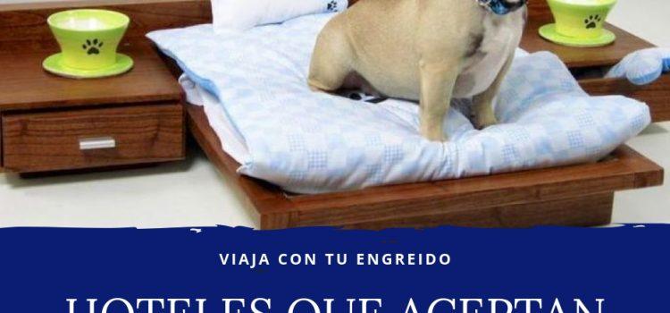 HOTELES QUE ACEPTAN PERROS EN EL PERU